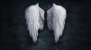 Christmas_collection_-_Angel_Wings