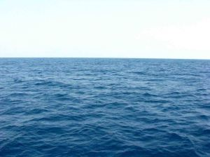 nike-sea