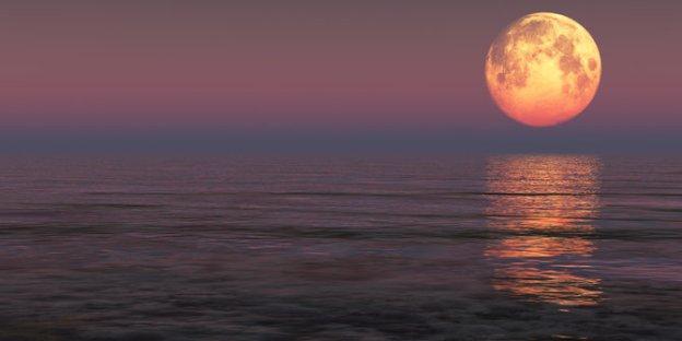 cahaya-bulan-purnama-bikin-susah-tidur